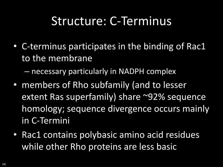 Structure: C-Terminus