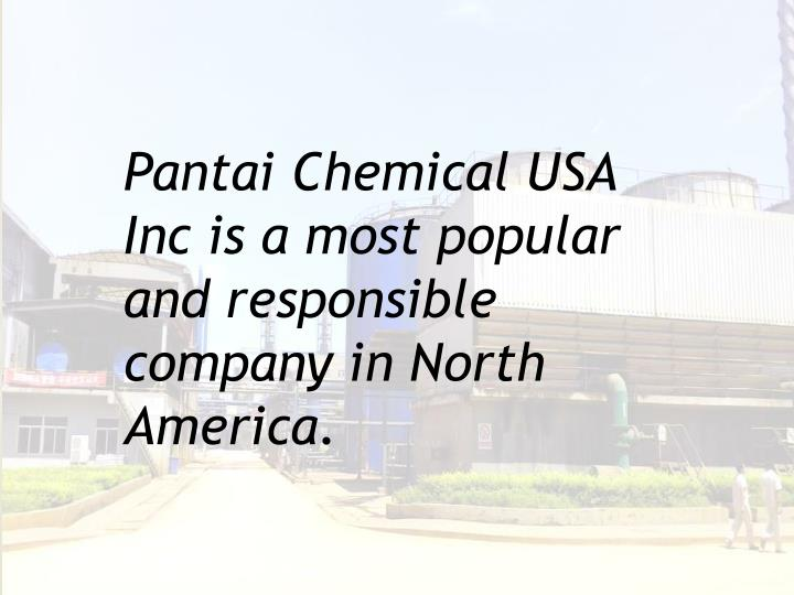 Pantai chemical usa inc is a most popular and responsible company in north america
