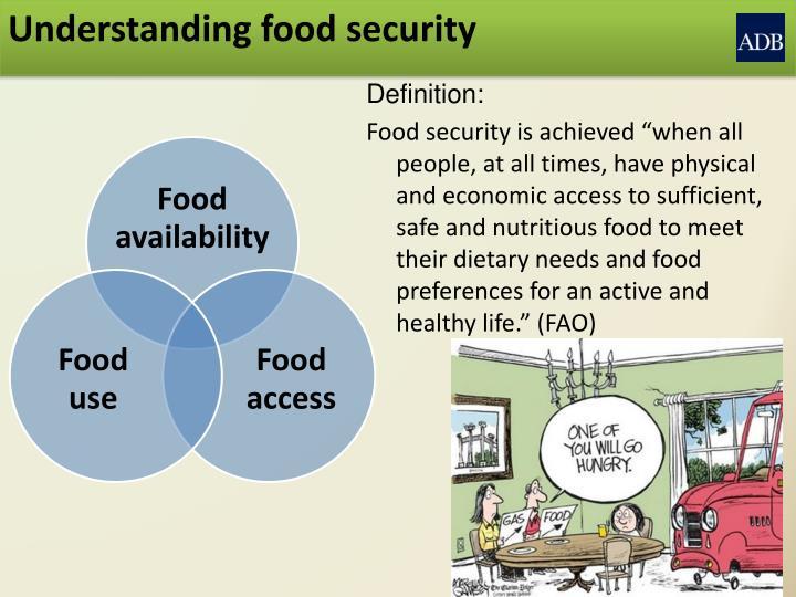 Understanding food security