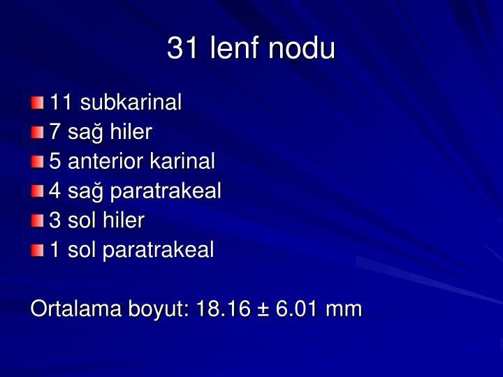 31 lenf nodu