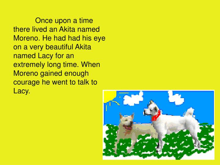 Once upon a time there lived an Akita named Moreno. He had had his eye on a very beautiful Akita named Lacy for an extremely long time. When Moreno gained enough courage he went to talk to Lacy.