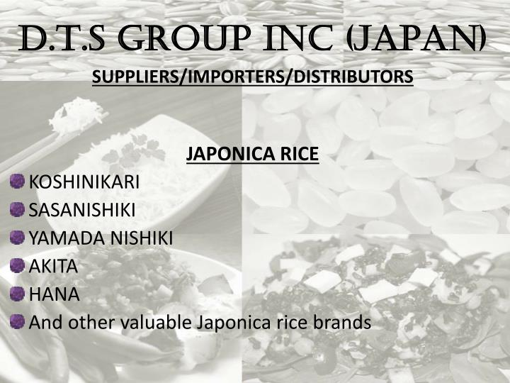 D.T.S GROUP INC (JAPAN)