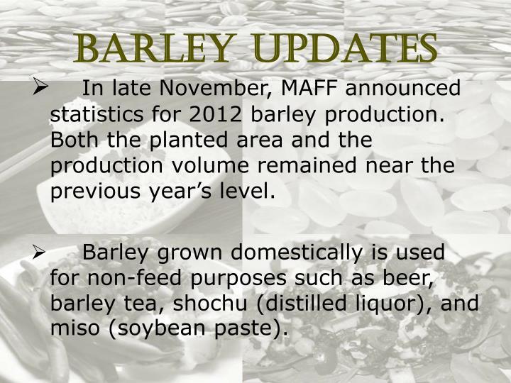 Barley Updates