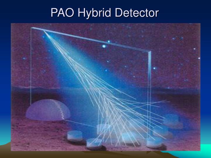 PAO Hybrid Detector