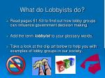 what do lobbyists do
