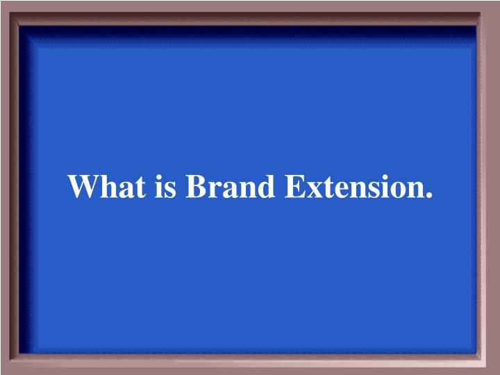 What is Brand Extension.