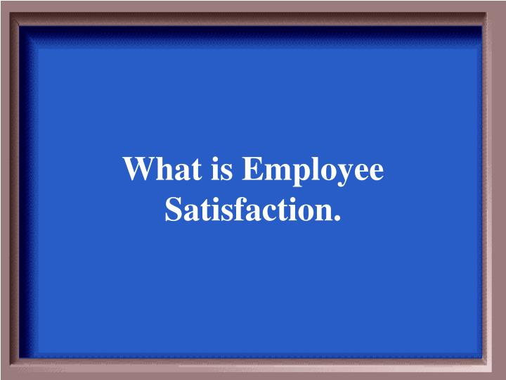 What is Employee Satisfaction.