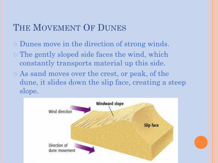 The Movement Of Dunes