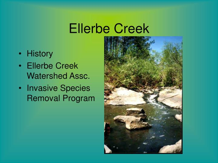 Ellerbe Creek