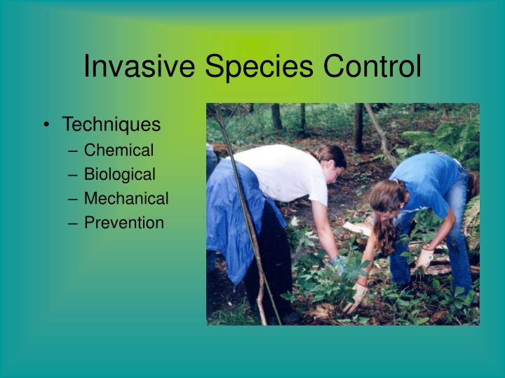 Invasive species control