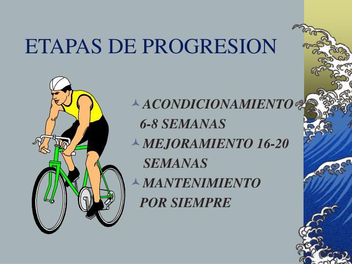 ETAPAS DE PROGRESION