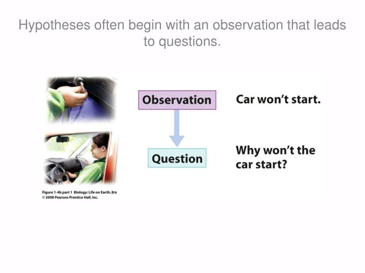 Hypotheses often begin with an observation that leads to questions.