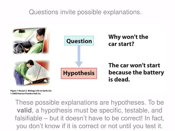 Questions invite possible explanations.
