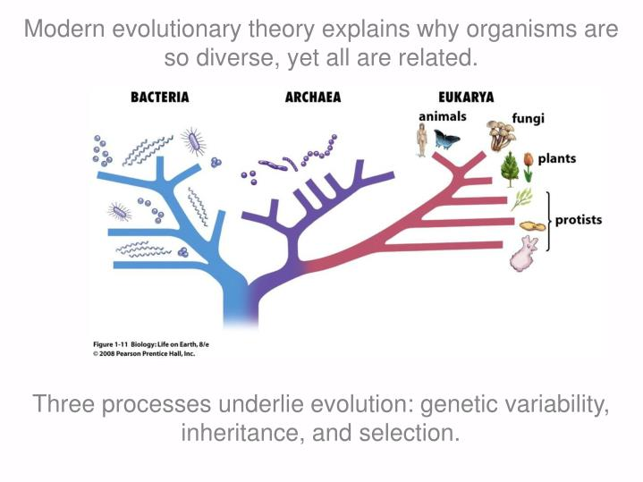 Modern evolutionary theory explains why organisms are so diverse, yet all are related.