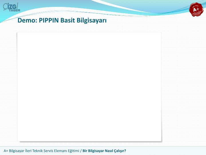 Demo: PIPPIN Basit Bilgisayarı