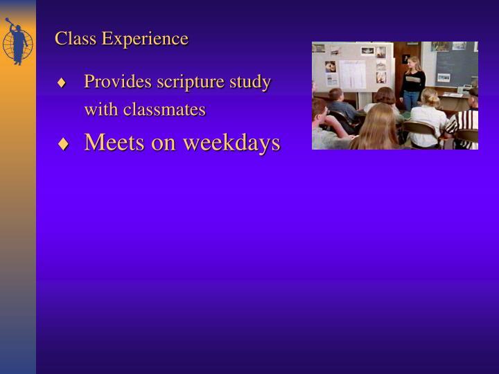 Provides scripture study