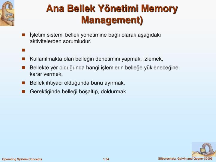 Ana Bellek Ynetimi