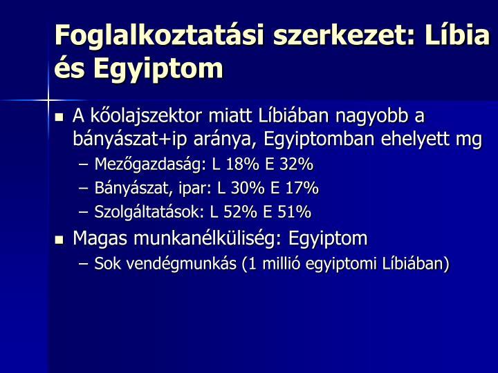 Foglalkoztatási szerkezet: Líbia és Egyiptom