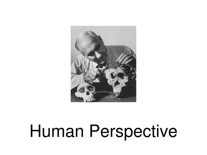 Human Perspective