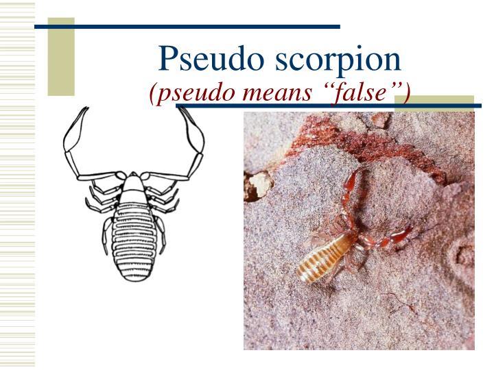 Pseudo scorpion