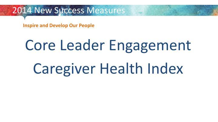2014 New Success Measures