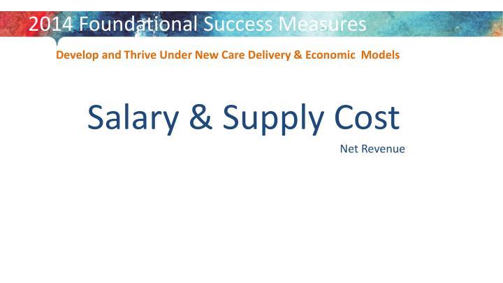 2014 Foundational Success Measures