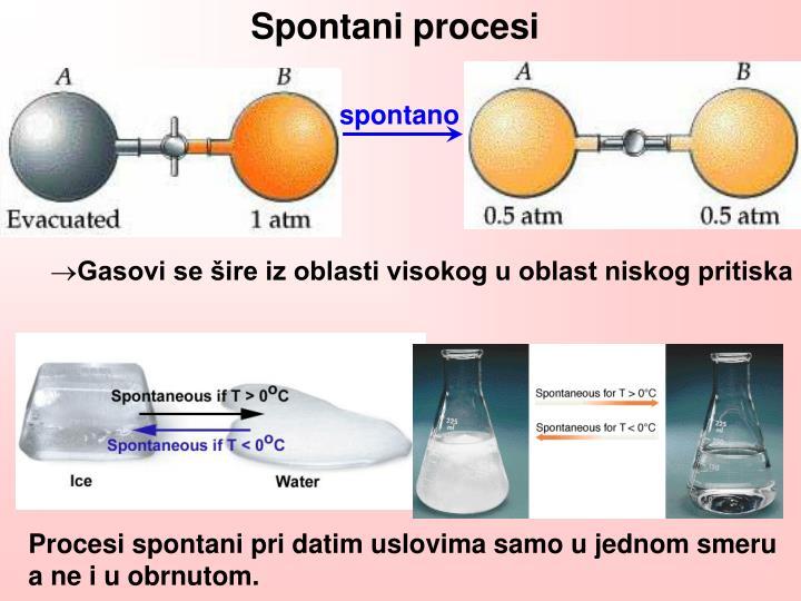 Spontani procesi