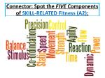 connector spot the five components of skill related fitness a2