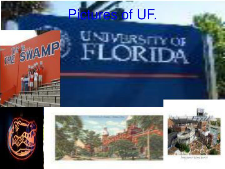 Pictures of UF.