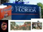 pictures of uf