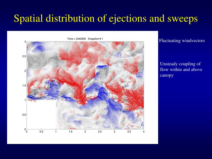 Spatial distribution of ejections and sweeps