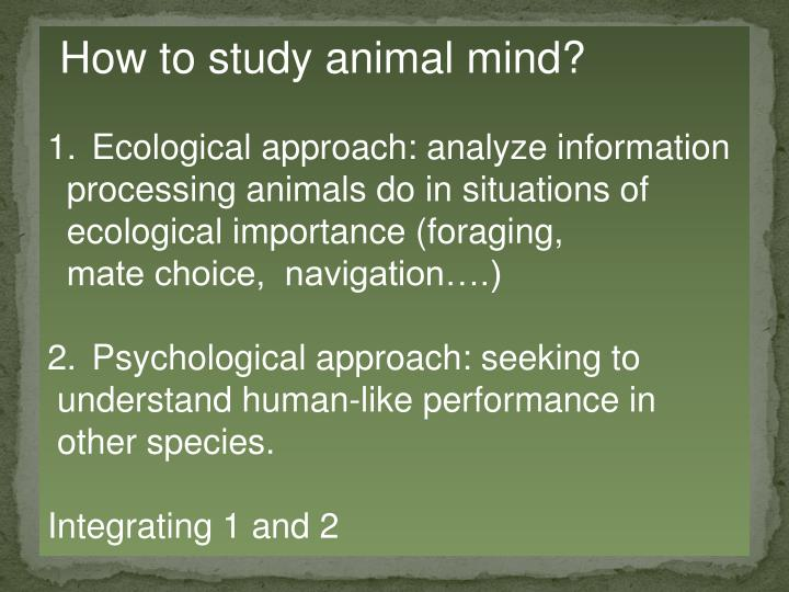 How to study animal mind?