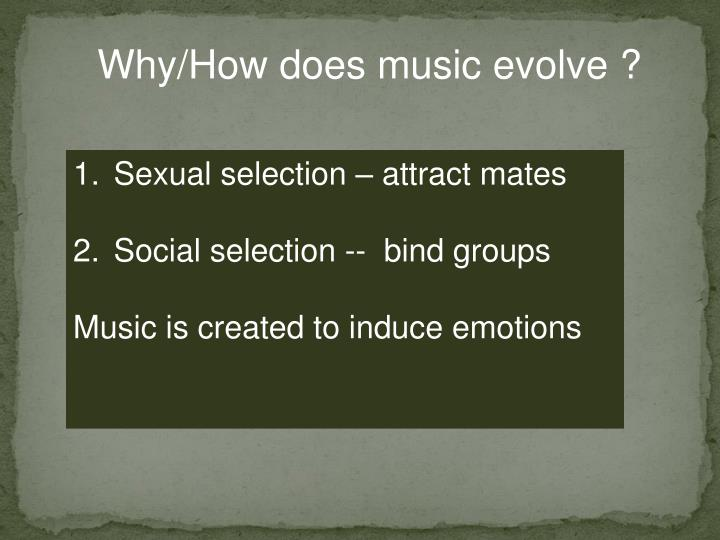 Why/How does music evolve ?