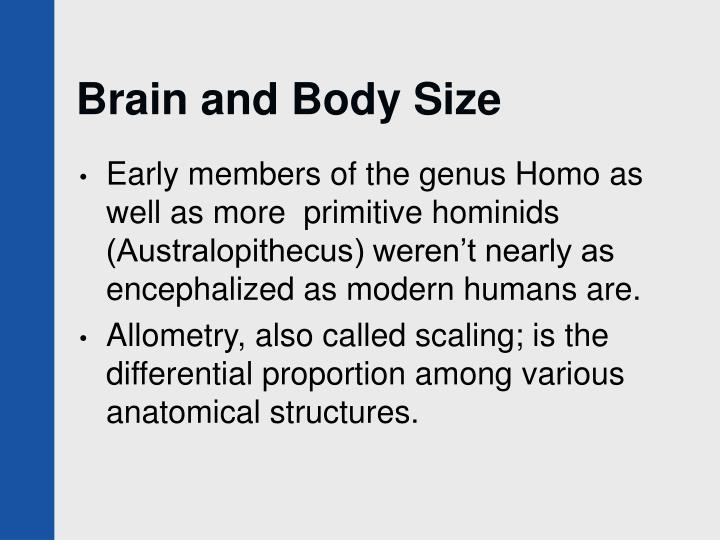 Brain and Body Size