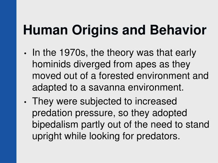 Human Origins and Behavior