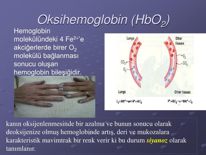 Oksihemoglobin (HbO