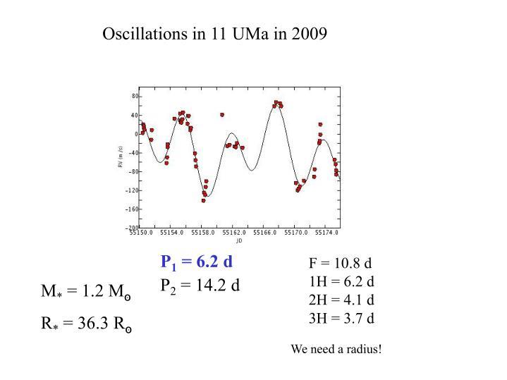 Oscillations in 11 UMa in 2009