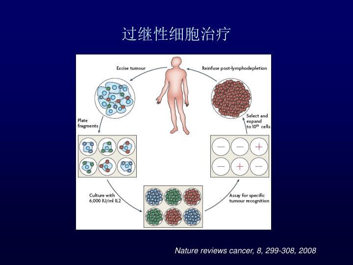 过继性细胞治疗