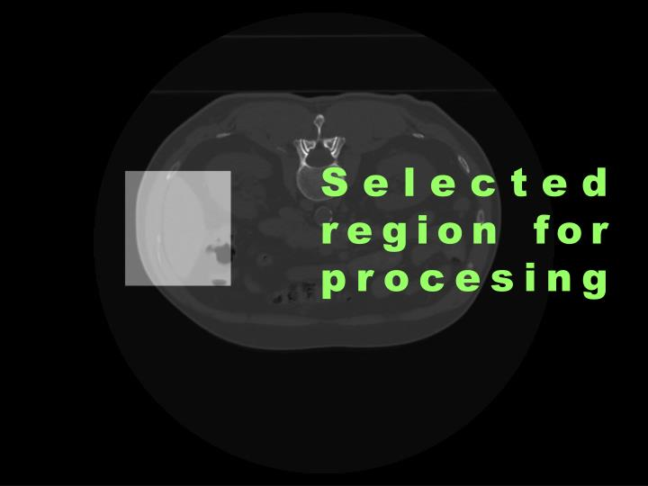 Selected region for procesing