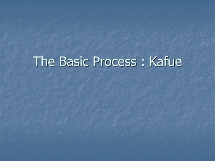 The Basic Process : Kafue