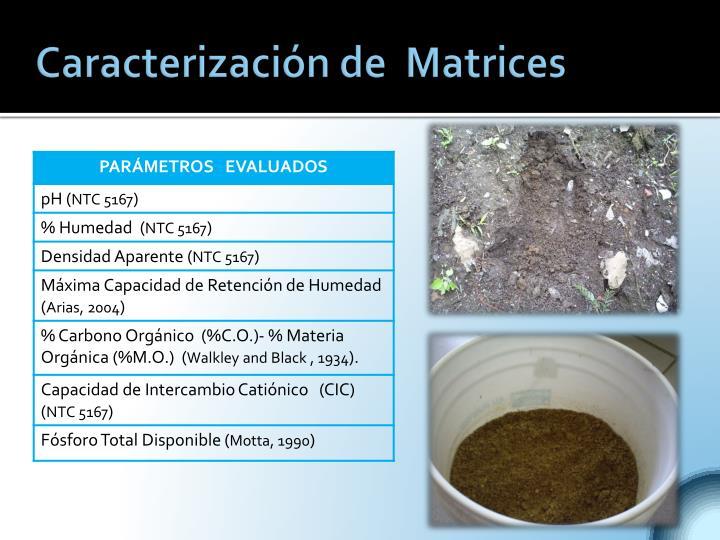 Caracterización de  Matrices
