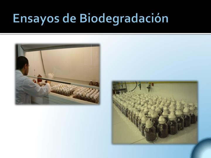 Ensayos de Biodegradación