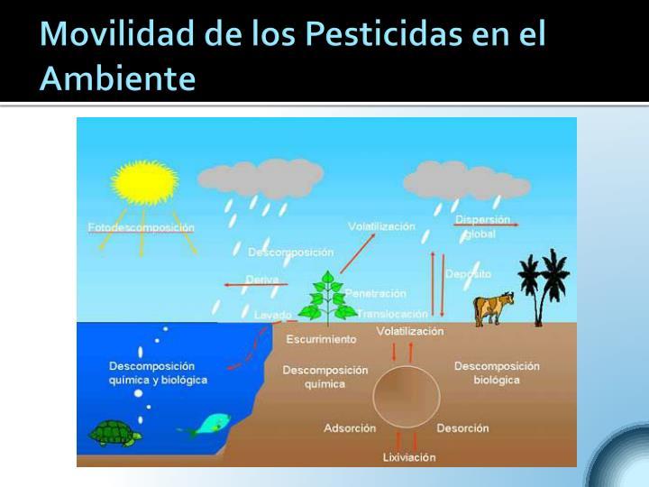 Movilidad de los Pesticidas en el Ambiente