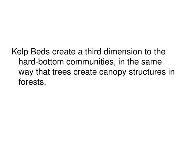 Kelp Beds create a third dimension to the hard-bottom communities, in the same way that trees create canopy structures in forests.