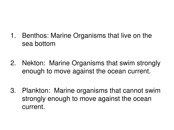 Benthos: Marine Organisms that live on the sea bottom