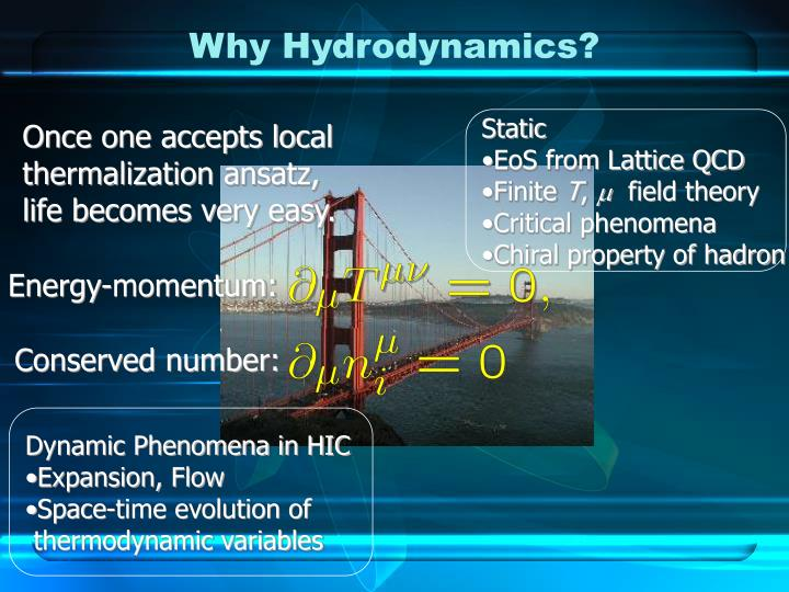 Why Hydrodynamics?