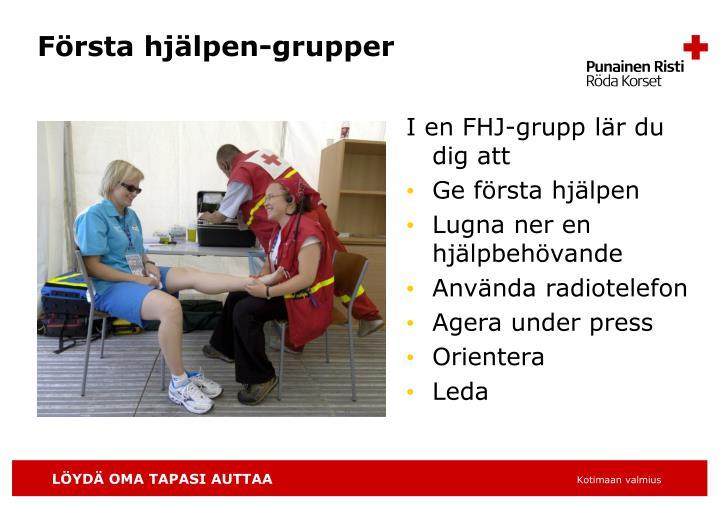 Första hjälpen-grupper