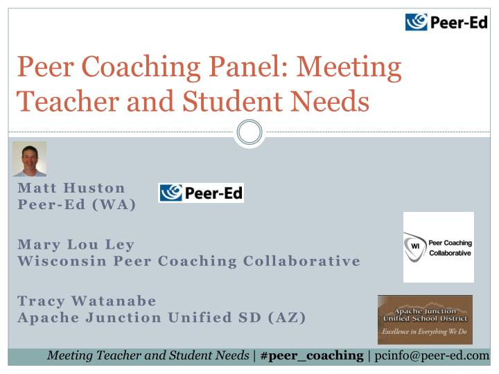 Peer coaching panel meeting teacher and student needs