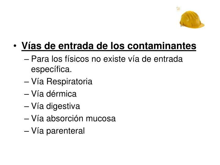 Vías de entrada de los contaminantes
