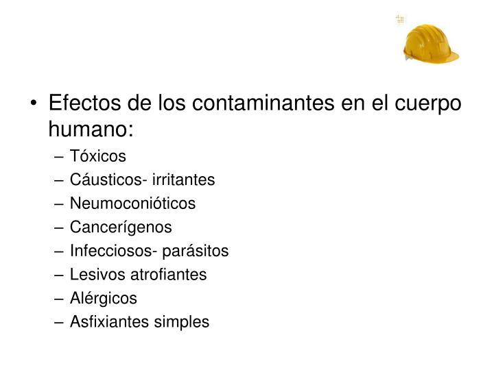 Efectos de los contaminantes en el cuerpo humano: